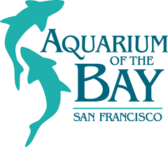 Aquarium-of-the-Bay